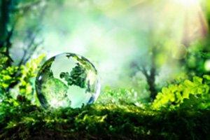 Environmental Resposibility